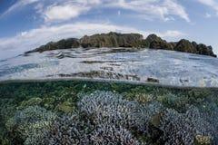 Coraux et îles renforcement de récif de chaux Photographie stock libre de droits