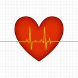 Corazón 1 Imagen de archivo