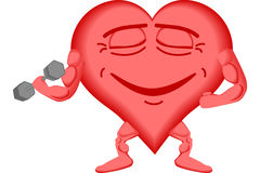 Corazón 2 sanos Imagen de archivo libre de regalías