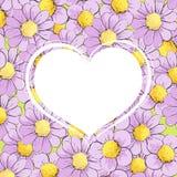 Corazón blanco en manzanilla Fotos de archivo