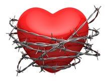 Corazón brillante rojo rodeado por el alambre de púas Fotografía de archivo libre de regalías