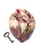 Corazón cercano Fotos de archivo