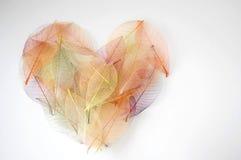Corazón colorido con la naturaleza Imágenes de archivo libres de regalías