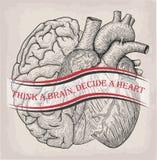 Corazón con el medio cerebro del ser humano junto Impresión dibujada mano libre illustration