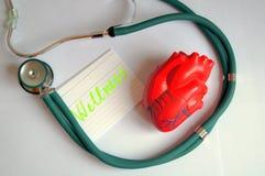 Corazón con el stetoscop Fotografía de archivo libre de regalías