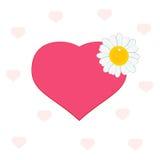 Corazón con la margarita Foto de archivo libre de regalías