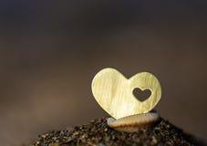 Corazón con un corazón en Shell Imagenes de archivo