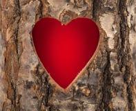 Corazón cortado en tronco de árbol de hueco Imágenes de archivo libres de regalías