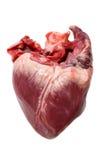 Corazón crudo del cerdo Fotografía de archivo