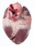 Corazón de cerdo fotos de archivo