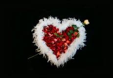Corazón de color de rosa, de pétalos y de la boa de plumas Imágenes de archivo libres de regalías