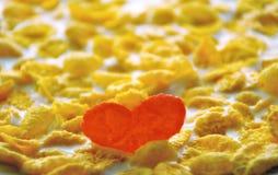 Corazón de escamas Fotos de archivo libres de regalías
