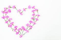 Corazón de flores rosadas en el fondo blanco Día del `s de la tarjeta del día de San Valentín Endecha plana, visión superior Fotos de archivo libres de regalías