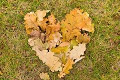 Corazón de hojas caidas Imágenes de archivo libres de regalías