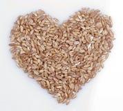 Corazón de la baya de trigo Imagen de archivo
