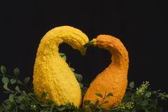 Corazón de la calabaza Imagen de archivo libre de regalías