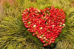 Corazón de la ceniza de montaña Fotografía de archivo libre de regalías