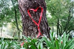 Corazón de la cinta de las tarjetas del día de San Valentín Imagen de archivo