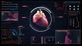 Corazón de la exploración Sistema cardiovascular humano Tecnología médica metrajes