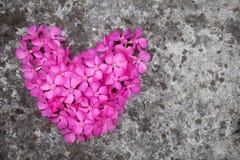 Corazón de la flor en el piso Foto de archivo libre de regalías