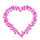 Corazón de la orquídea Fotografía de archivo libre de regalías