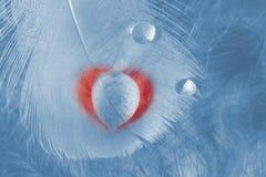 Corazón de la sombra de la gota Imagen de archivo