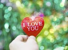Corazón de la tarjeta del día de San Valentín de la colección de la foto Foto de archivo libre de regalías