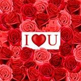 Corazón de la tarjeta del día de San Valentín en fondo rojo de las rosas Foto de archivo libre de regalías