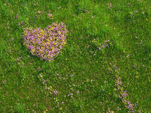 Corazón de la tarjeta del día de San Valentín hecho de flores frescas imagen de archivo