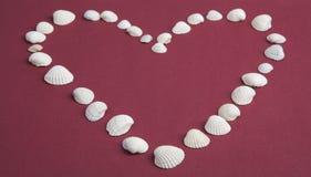 Corazón de las conchas marinas blancas en un fondo rojo Imágenes de archivo libres de regalías