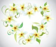 Corazón de las flores Imágenes de archivo libres de regalías