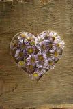 Corazón de las flores. Fotos de archivo