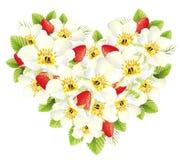 Corazón de las fresas y de las flores Imágenes de archivo libres de regalías
