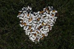 Corazón de las habas del color en hierba Imagen de archivo libre de regalías