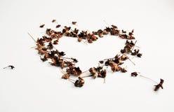 Corazón de las hojas fotos de archivo