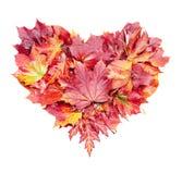 Corazón de las hojas de otoño Imágenes de archivo libres de regalías