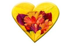 Corazón de las hojas de otoño Imagen de archivo libre de regalías