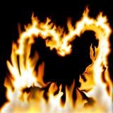 Corazón de llamas Imagenes de archivo