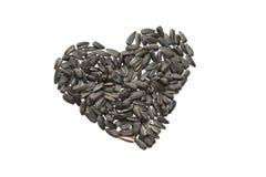 Corazón de los gérmenes de girasol Foto de archivo libre de regalías