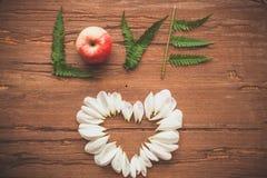 Corazón de los pétalos Imagen de archivo libre de regalías