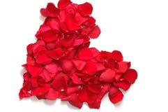 Corazón de los pétalos de rosas rojas Fotografía de archivo