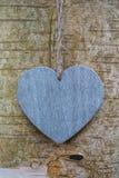 Corazón de madera del amor de la textura en tronco de árbol Foto de archivo