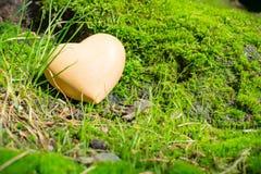 Corazón de madera en naturaleza Foto de archivo
