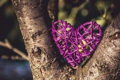 Corazón de mimbre en el árbol Día del `s de la tarjeta del día de San Valentín Purple Heart Imagen de archivo