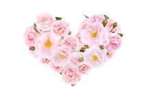 Corazón de pálido - rosas y brotes rosados foto de archivo
