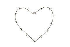 Corazón de púas Fotografía de archivo