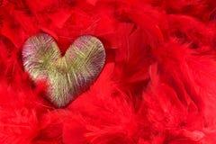 corazón de plumas rojas Imagen de archivo