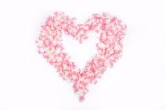 Corazón de rosas Imagen de archivo