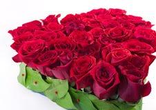 Corazón de rosas Imágenes de archivo libres de regalías