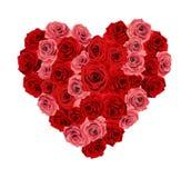Corazón de Rose Foto de archivo libre de regalías